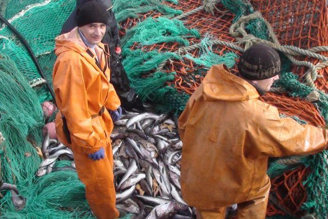 Главная задача рыбаков края - добыть больше рыбы для страны.