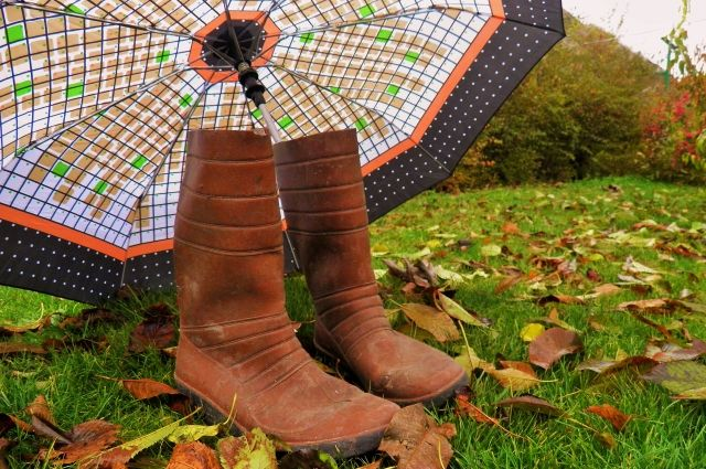 Дождливо и снежно будет в Приангарье в ближайшие сутки.
