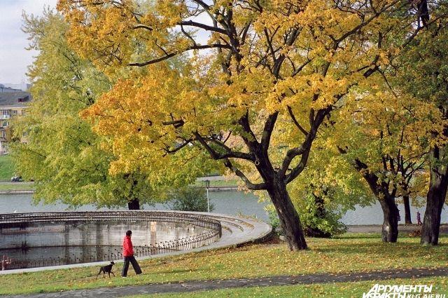 Калининград назван одним из городов-лидеров для путешествий осенью.