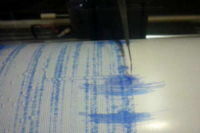 Сейсмологи зафиксировали землетрясение магнитудой 4,6 уберегов Камчатки
