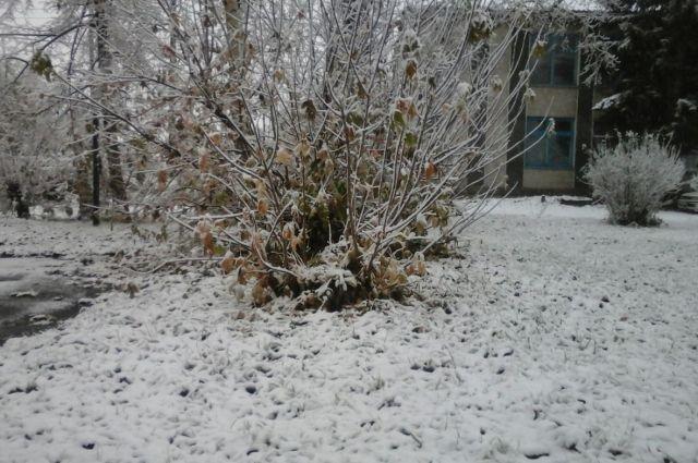 В Черепановский район пришла зима