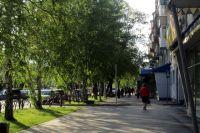 Портал «Тюмень – наш дом» помогает горожанам следить за качеством дорог