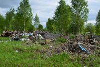 Возле Червишево сотрудники МЧС спасли лес от захламления