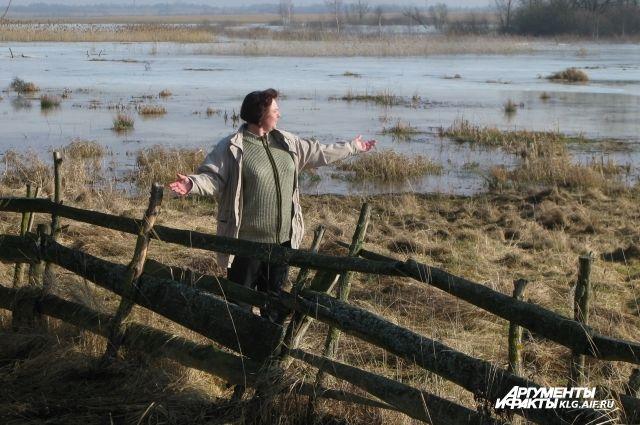 МЧС ликвидирует последствия подтопления населенных пунктов Калининградской области