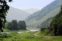 Урочище реки Щеки Алтайский край