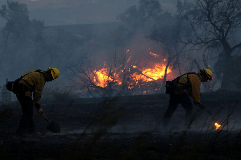 Пожарные тушат лесной пожар в Ориндже.