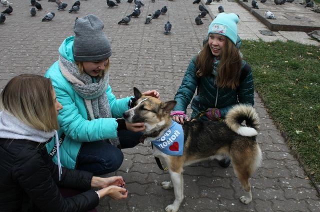 В центре Новосибирска прошел необычный тест-драйв