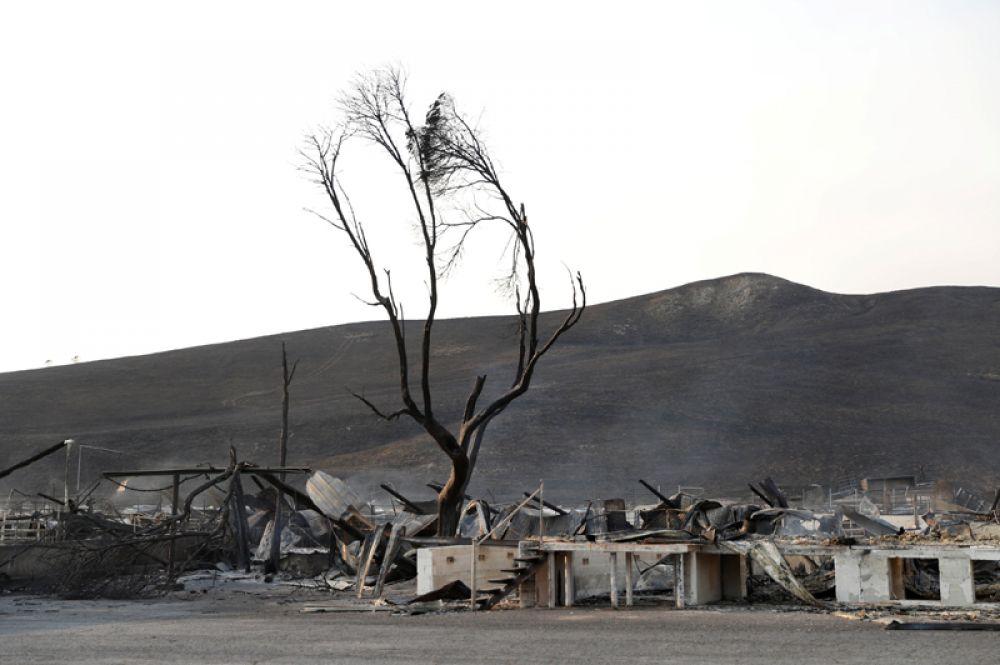 Сгоревшие дома в Сономе.