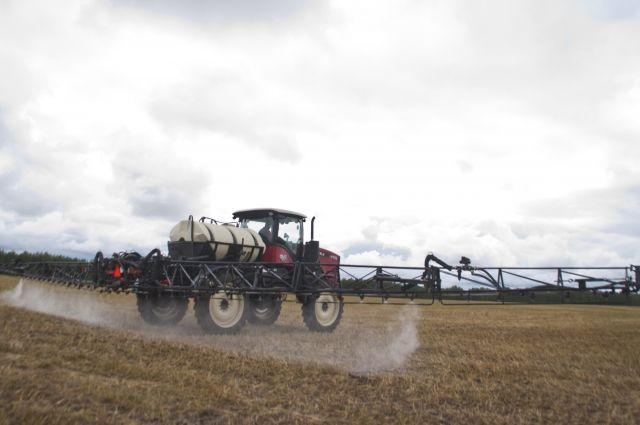 В 7-ми районах Омской области уже собрали урожай