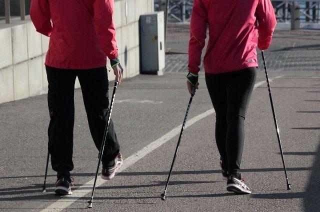 Скандинавская ходьба становится все популярнее в России.