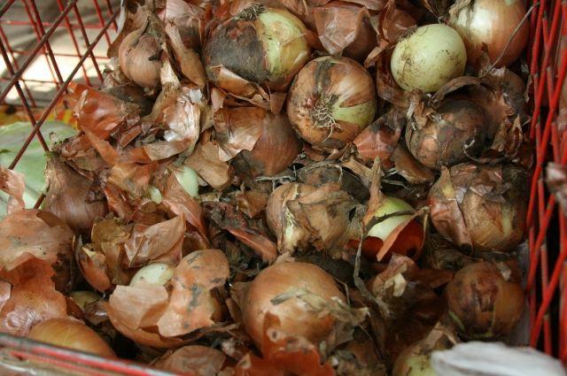 ВСамаре в 2-х гипермаркетах отыскали гнилые продукты