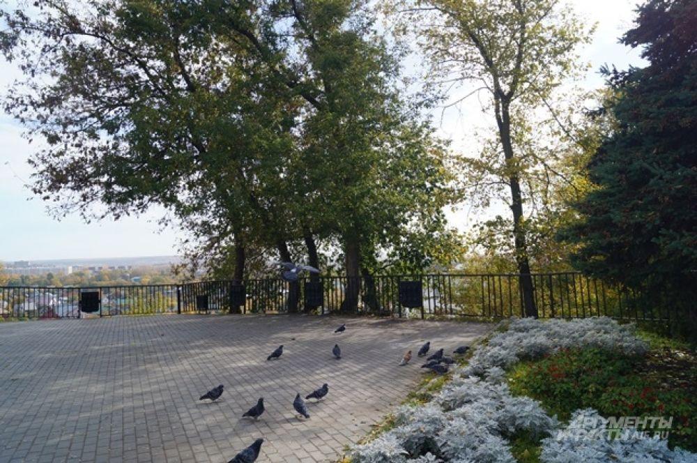 Смотровая площадка на улице Кирова.