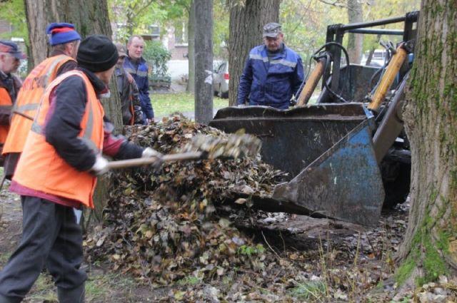 ВЯрославле коммунальщики убирают опавшую листву ночами