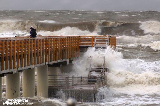 МЧС предупредило калининградцев об усилении ветра до 25 м/с.