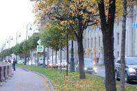 Зеленые насаждения помогут улучшить экологию в городе.