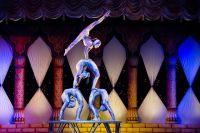 Цирк из Тюменской области поедет в Челябинск