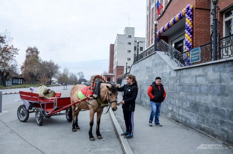 До середины 20 века инкассация производилась на лошадях. Работа инкассатора была очень опасной. Инкассацией занимались фельдъегеря.