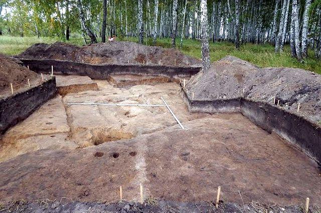Археологи под Тюменью обнаружили древнее городище в форме мотылька