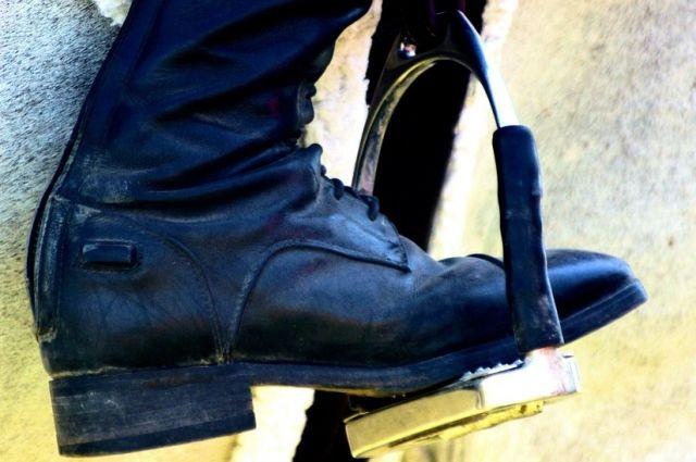 ВАлтайском крае будут судить молодого человека засмертельное падение девушки слошади