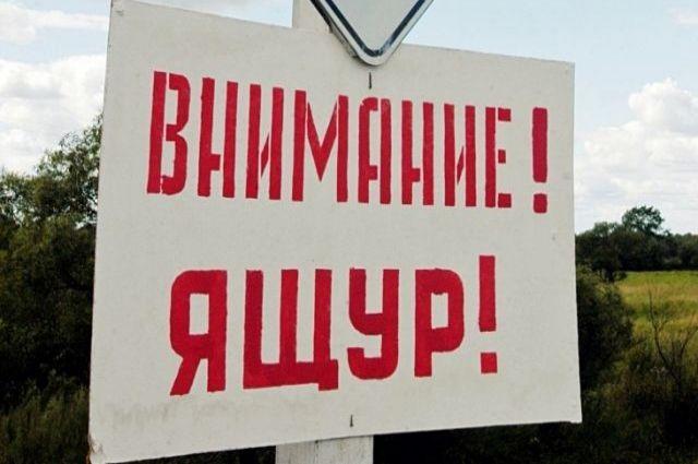 Власти Башкирии сообщили об остановке распространения ящура в регионе