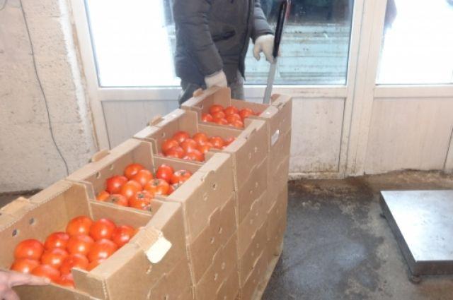 «Адская кухня»: Россельхознадзор сжег 150кг санкционных продуктов вПетербурге