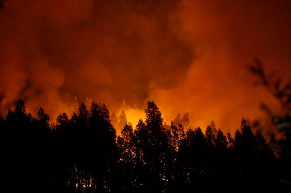 Лесные пожары около города Лоуса в Португалии.