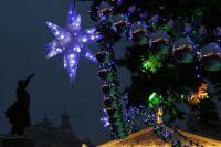 Тюмень на Новый год украсят 28 живых и 9 искусственных елей