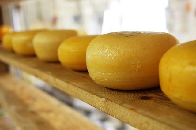 Почти половина образцов сыра – подделка.
