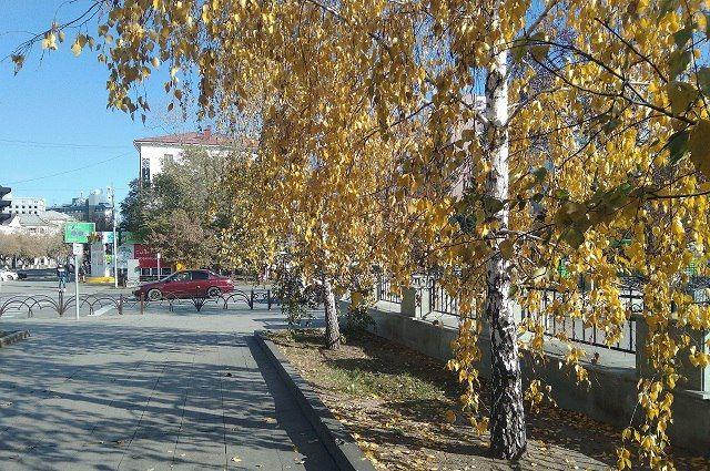 Поисковый отряд «Белая Сова – Тюмень» участвует во Всероссийском конкурсе