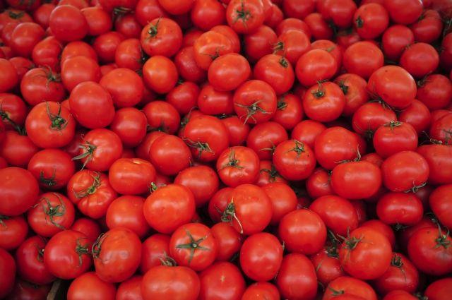 Россия согласовала с Турцией поставки томатов