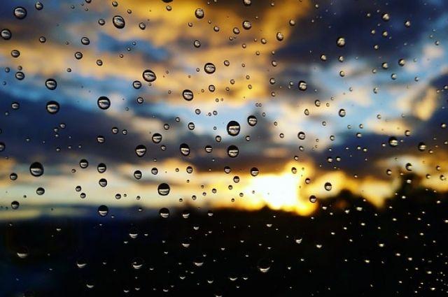 Вближайшие дни— восновом без дождей, ночью кое-где «минус»