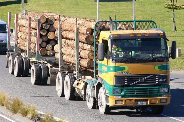 ВАрхангельской области дорожный инспектор попался навзятках от собственников лесовозов