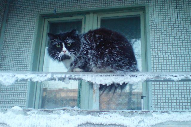 В Кемеровскую область идут холода.