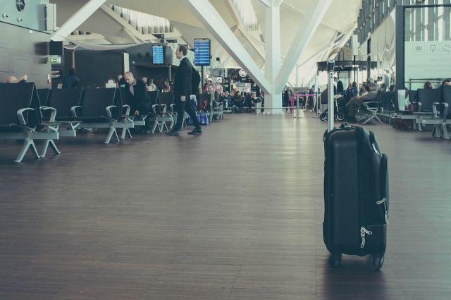 Двух работников аэропорта Домодедово заподозрили в кражах