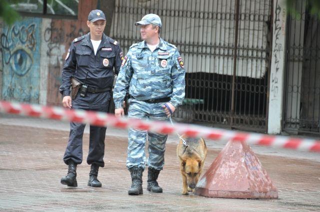 Полиция проводит проверку по делу.