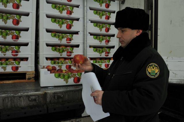 Смоленские пограничники задержали сразу 6 фур ссанкционкой