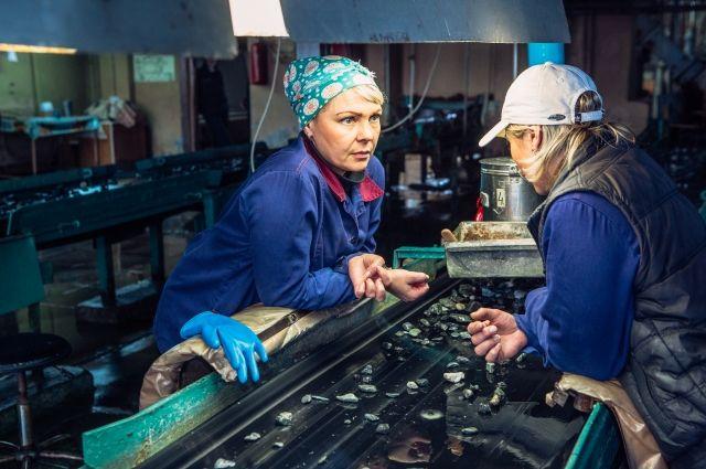 Добыча бериллиевых концентратов потребует на предприятии новых рабочих рук.
