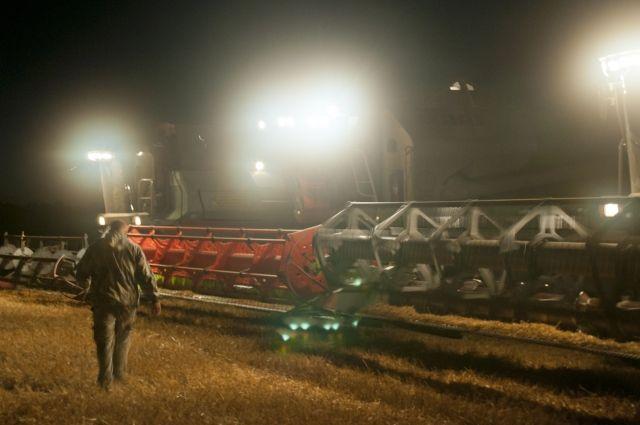 Погоджа подвела аграриев после сева, но позволила собрать урожай вовремя.