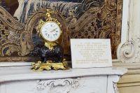 Часы с носорогом в течение 100 лет показывали время 2 часа 10 минут.