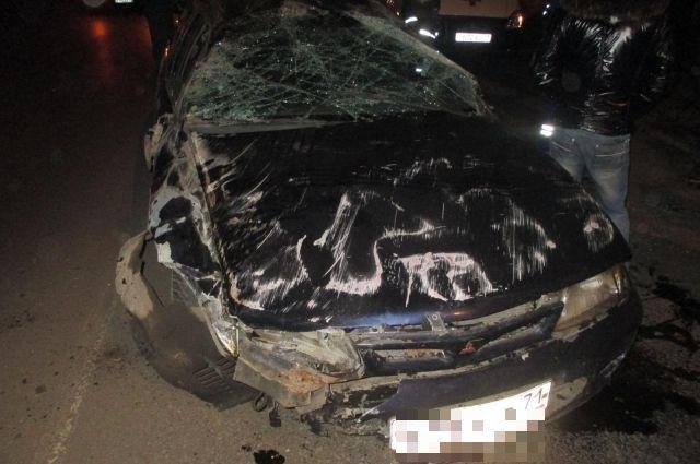 ВТульской области нетрезвый шофёр сбил двоих человек насмерть