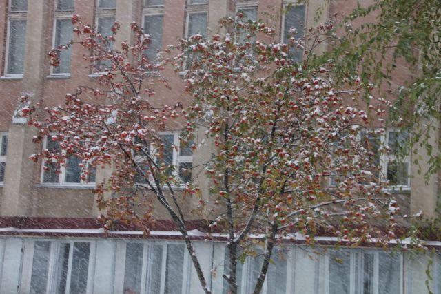 Погоду на выходных в Кузбассе будет определять циклон.