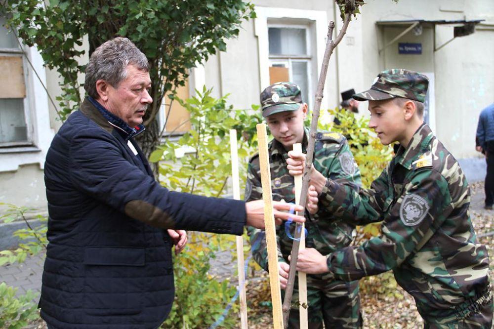 Осенние посадки деревьев и кустарников сейчас проходят по всей Ростовской области.