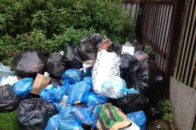 Арендатор превратил живописную базу в свалку мусора