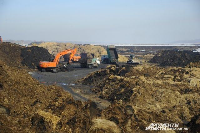 Реконструкция буферного пруда не связана с выбросами этилмеркаптана в Омске.