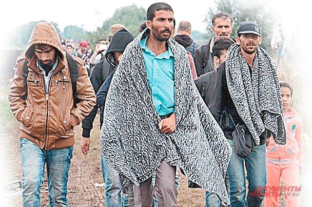 Вевропейских странах произошла массовая драка беженцев