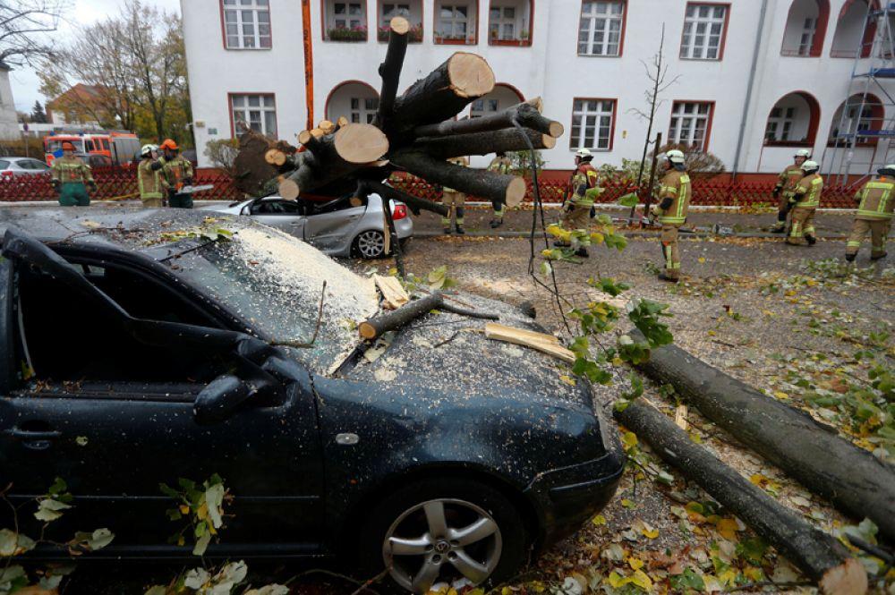 Пожарные убирают упавшие во время бури деревья в Берлине.
