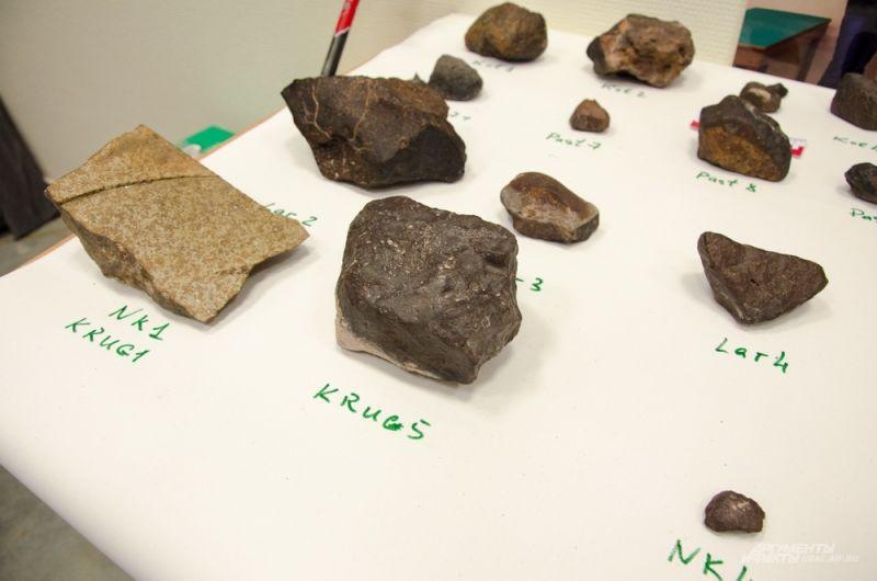 Чилийская метеоритная экспедиция проходила с 11 по 27 октября в пустыне Атакама в районе города Антофагаста.