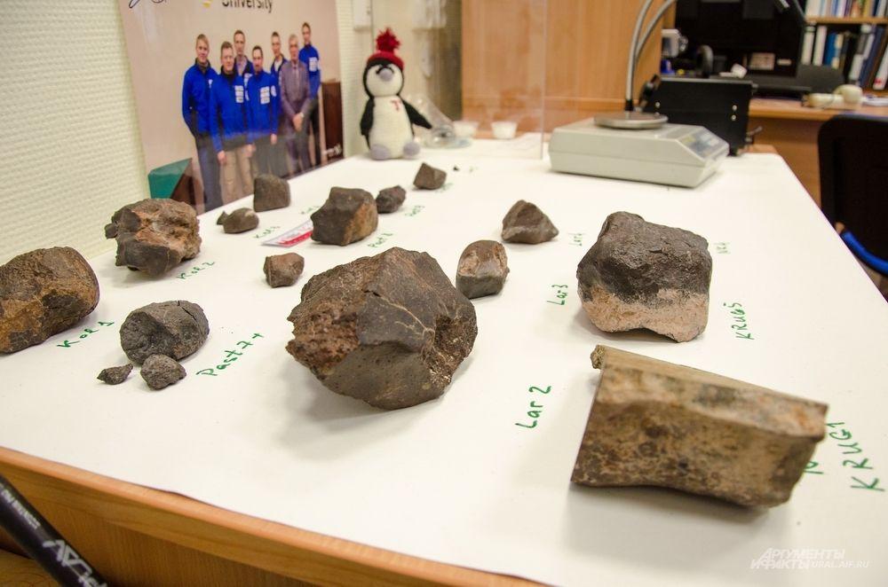Ученым предстоит изучить найденные метеориты и их компоненты.