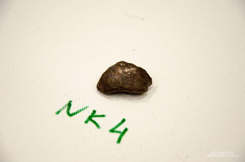 Участники экспедиции вернулись из поездки с находками — они отыскали на севере в пустыне Атакама порядка 20 кг образцов для исследования.