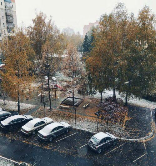 В Сумах первый снегопад продолжался несколько часов, на улицах стало белым-бело.